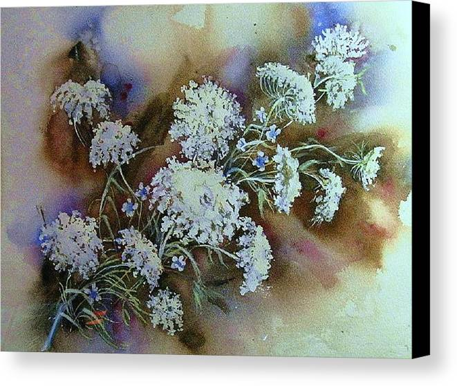 Ragweed Canvas Print featuring the painting Wild Carrot -queen Anne's Lace Vignette  by June Conte Pryor