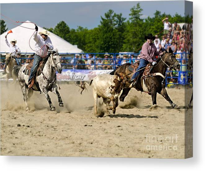 Rodeo Canvas Print featuring the photograph Gotcha by Barry Fawcett