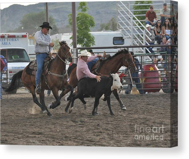 Rodeo Canvas Print featuring the photograph Down Low by Jeff Krogstad