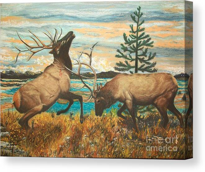 Landscape Canvas Print featuring the painting Elk At Sunrise by Jim Barber Hove