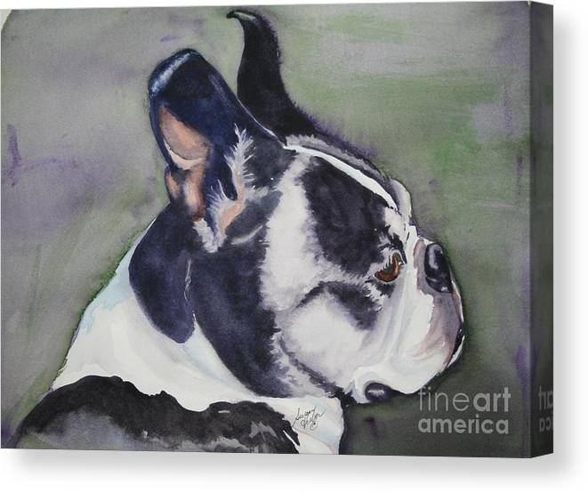 Boston Terrier Canvas Print featuring the painting Profile by Susan Herber