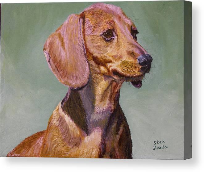 Daschund Canvas Print featuring the painting My Daschund by Stan Hamilton