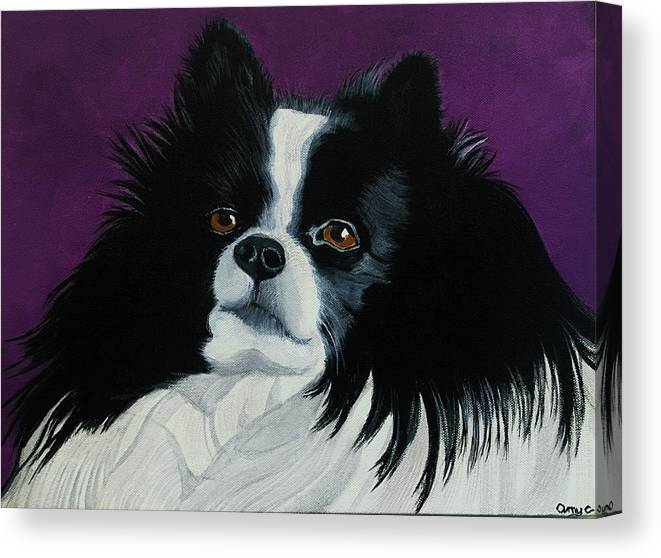 Pomeranian Canvas Print featuring the painting Cooper - Pomeranian by Amy Collier