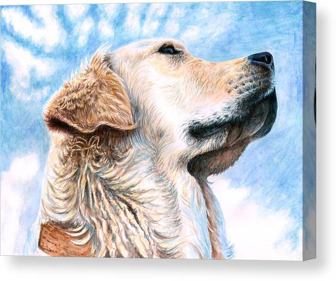 Dog Canvas Print featuring the painting Golden Retriever by Nicole Zeug