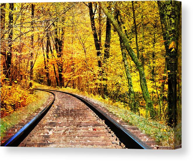 Fall Canvas Print featuring the photograph Into The Forest by Kathy Jennings