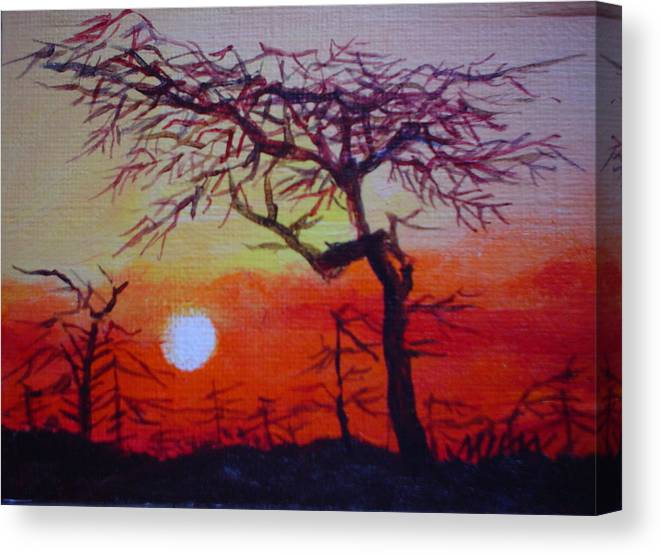 Night Canvas Print featuring the painting Into The Night by Min Wang