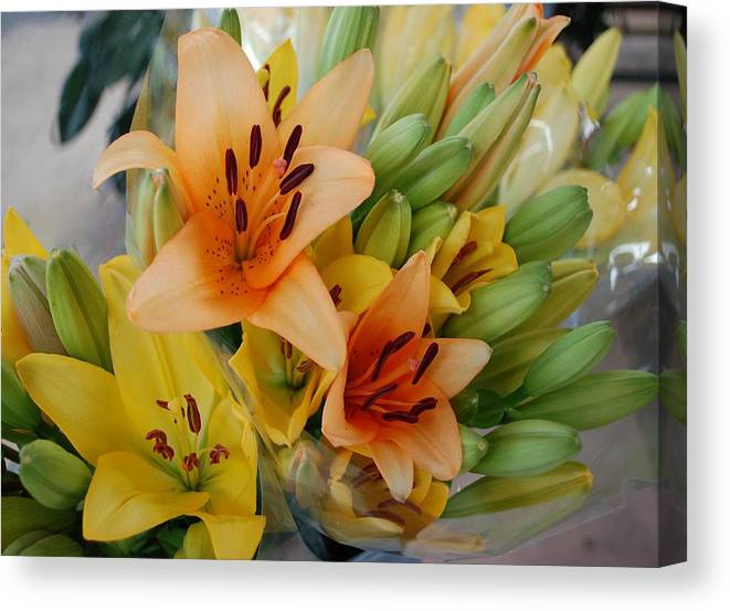 Canvas Print featuring the painting Lillies - Peach And Yellow Colors by Michael Thomas