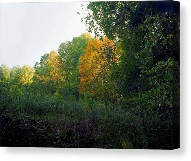 Autumn Canvas Print featuring the photograph Sand Gap Hillside by George Ferrell