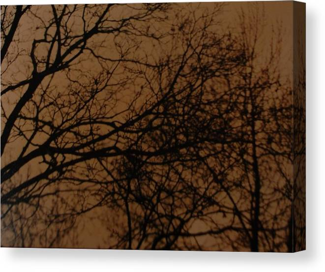 Landscape Canvas Print featuring the photograph Sunset Winter by Rob Hans