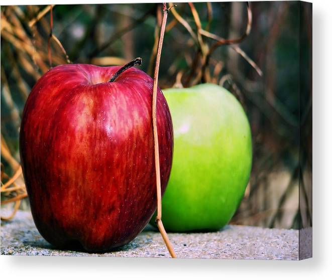 Apple Canvas Print featuring the photograph Two Forty Six by Karen Scovill