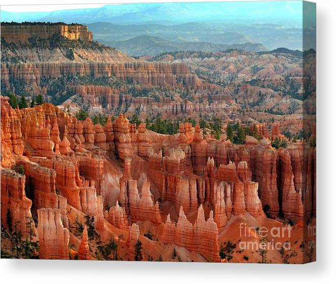 Bryce Canyon Canvas Print featuring the Hoodoo's Bryce Canyon by Chuck Kuhn