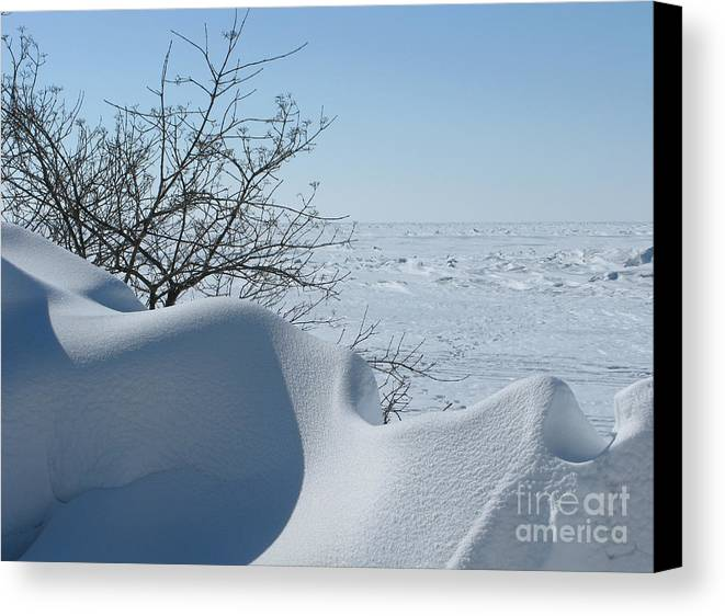 Winter Canvas Print featuring the photograph A Gentle Beauty by Ann Horn