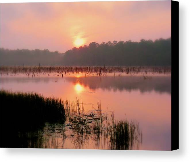 Alabama Canvas Print featuring the photograph A Wetlands Sunrise by JC Findley