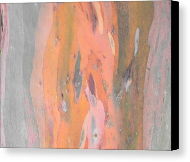 Nature Art Canvas Print featuring the photograph Abstract Nature 0 by Nili Tochner