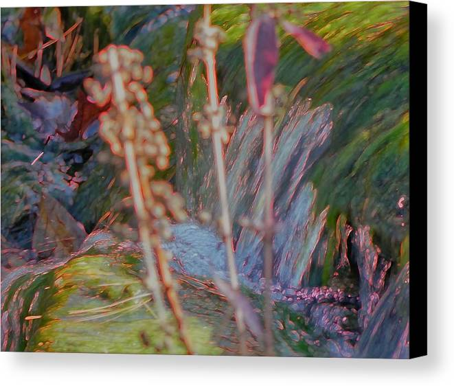 Nature Art Canvas Print featuring the photograph Abstract Nature 9 by Nili Tochner