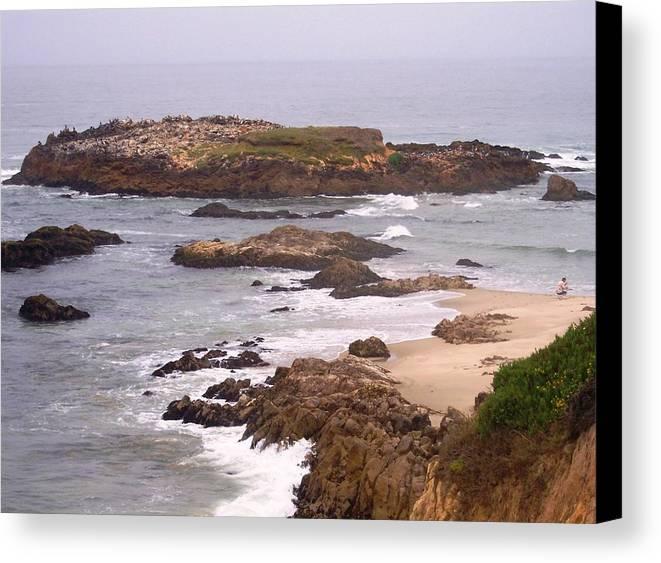 Coast Canvas Print featuring the photograph Coastal Scene 9 by Pharris Art