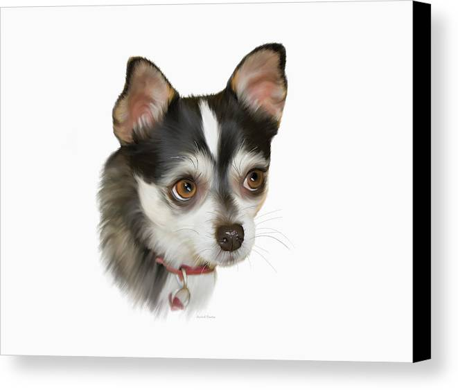 White Background Canvas Print featuring the photograph Computer Generated Portrait Of A Dog by Angela A Stanton