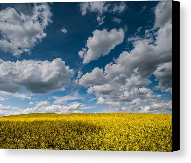 Landscapes Canvas Print featuring the photograph Happiness by Davorin Mance