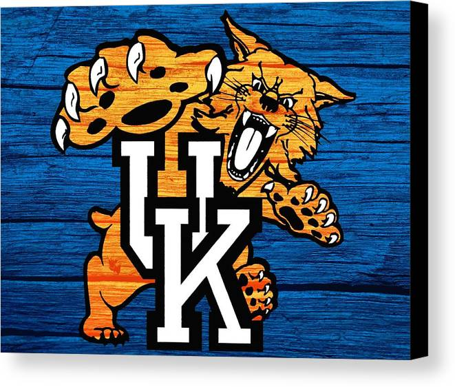 Kentucky Wildcats Barn Door Canvas Print / Canvas Art by Dan Sproul