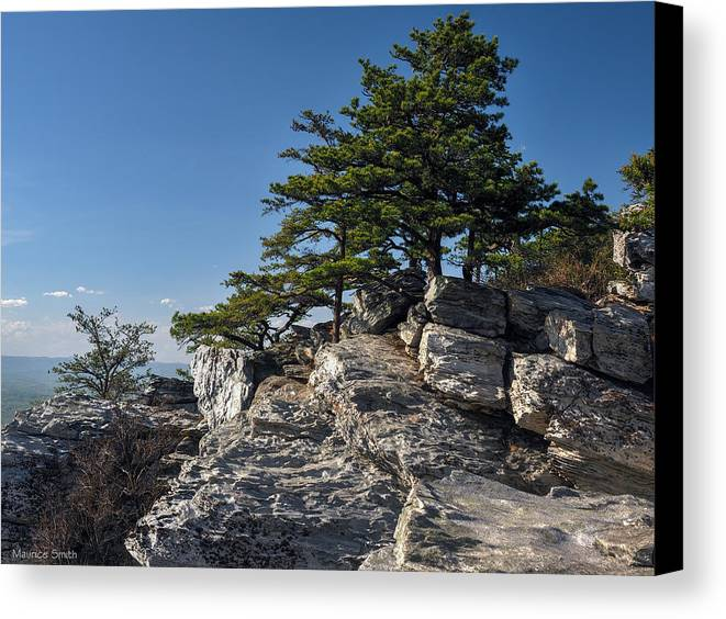 Landscape Canvas Print featuring the photograph Mountain View by Maurice Smith