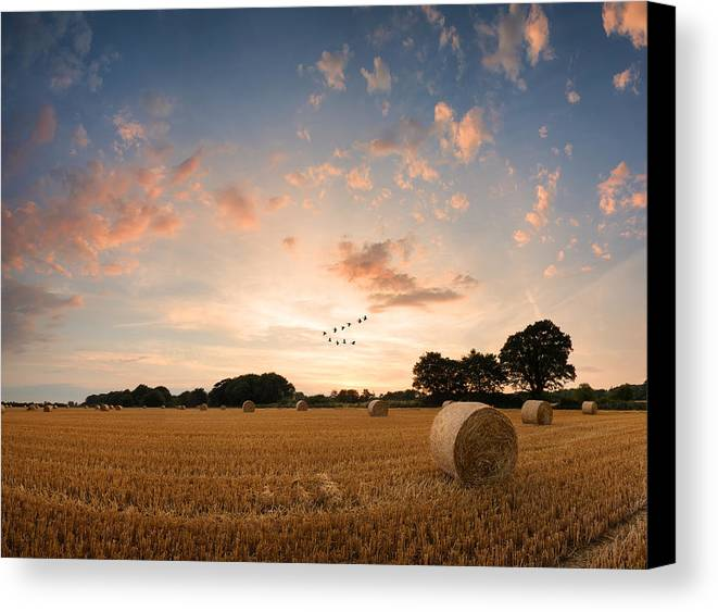 Art Canvas Print featuring the photograph Stunning Summer Landscape Of Hay Bales In Field At Sunset Digital Painting by Matthew Gibson