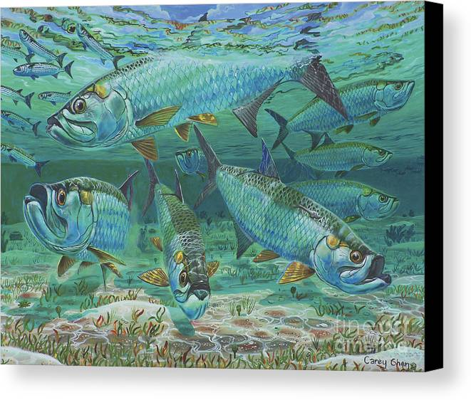 Tarpon Canvas Print featuring the painting Tarpon Rolling In0025 by Carey Chen