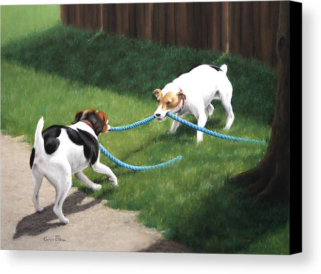 Jack Russel Terriers Playing Canvas Print featuring the pastel Tug-o-war by Karen Elkan