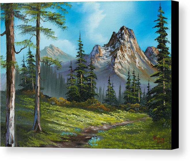 Landscape Canvas Print featuring the painting Wilderness Trail by C Steele