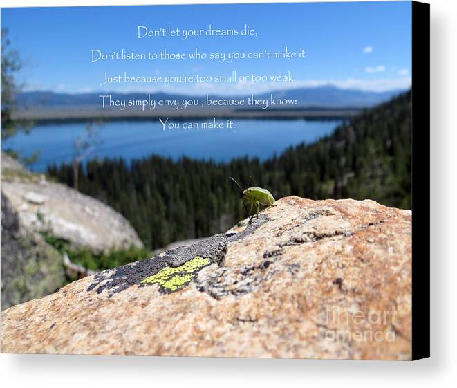 Inspiration Point Canvas Print featuring the photograph You Can Make It. Inspiration Point by Ausra Huntington nee Paulauskaite