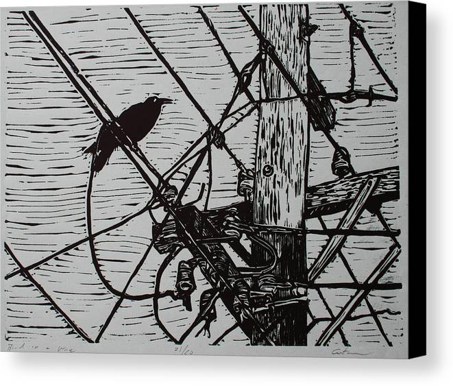 Bird Canvas Print featuring the drawing Bird On A Wire by William Cauthern