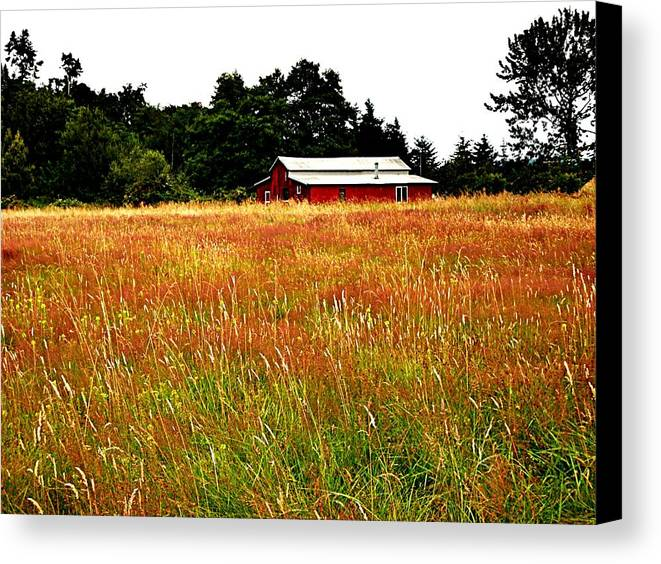 Barn Canvas Print featuring the photograph Amber Waves by Kevin D Davis