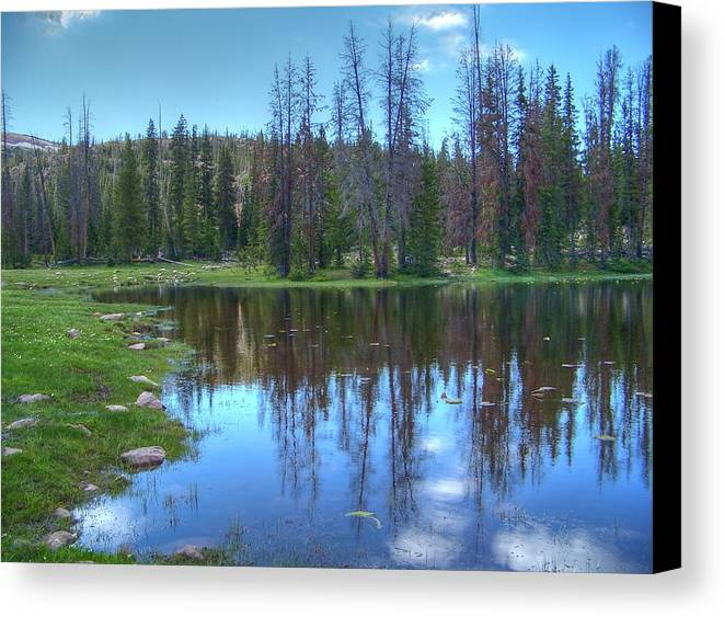 Butterfly Lake Canvas Print featuring the photograph Butterfly Lake by Shirlene Davis