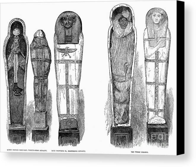 1881 Canvas Print featuring the photograph Egypt: Royal Mummies, 1882 by Granger