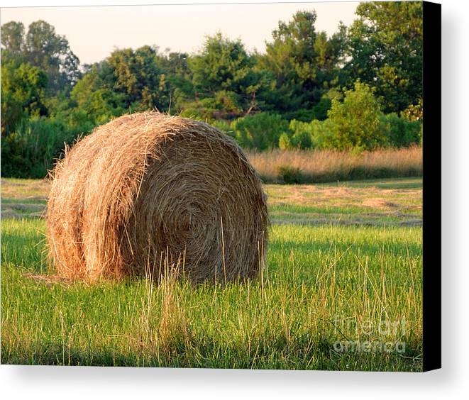 Hay Canvas Print featuring the photograph Haybale by Louise Peardon