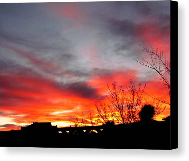 Morning Glory Canvas Print featuring the photograph Morning Glory by Joyce Woodhouse
