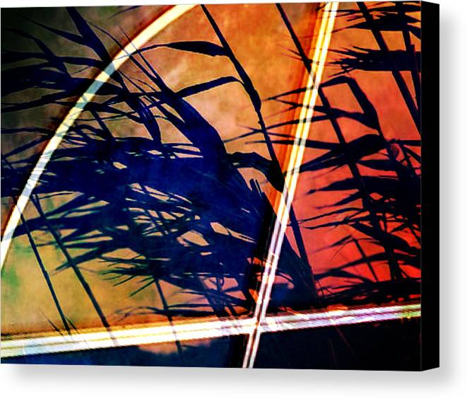 Window Canvas Print featuring the photograph Visual by Landry McKee