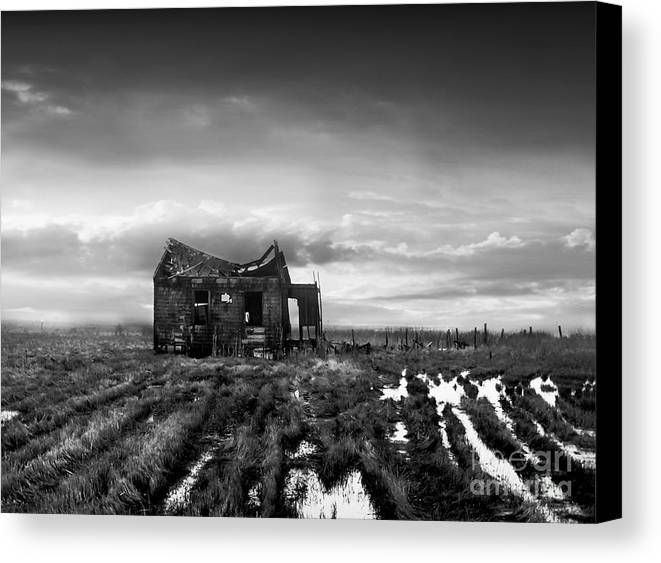 Architecture Canvas Print featuring the photograph The Shack by Dana DiPasquale