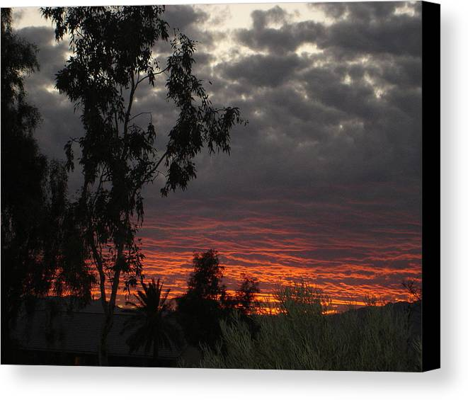 Landscape Canvas Print featuring the photograph Arizona Sunset II by Lessandra Grimley