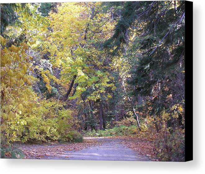 Autumn Photographs Canvas Print featuring the photograph Autum Colors by Louise Magno