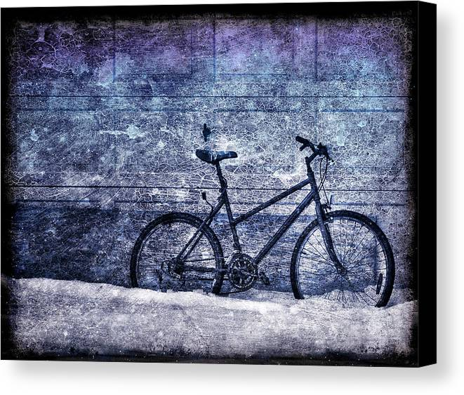Bicycle Canvas Print featuring the photograph Bicycle by Evelina Kremsdorf