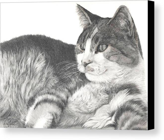 Cats Canvas Print featuring the drawing Chance by Lisa Bell