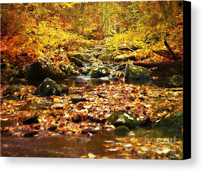 Fall Photographs Canvas Print featuring the photograph Creek In The Woods by Kathy Jennings