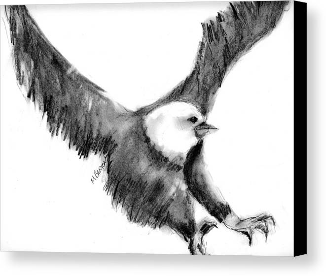 Eagle Canvas Print featuring the drawing Eagle In Flight by Marilyn Barton