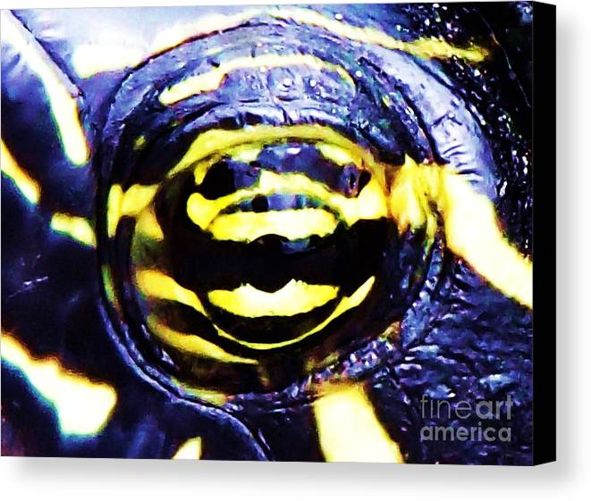 Turtle Canvas Print featuring the photograph Eye Of The Turtle by Donna Cain
