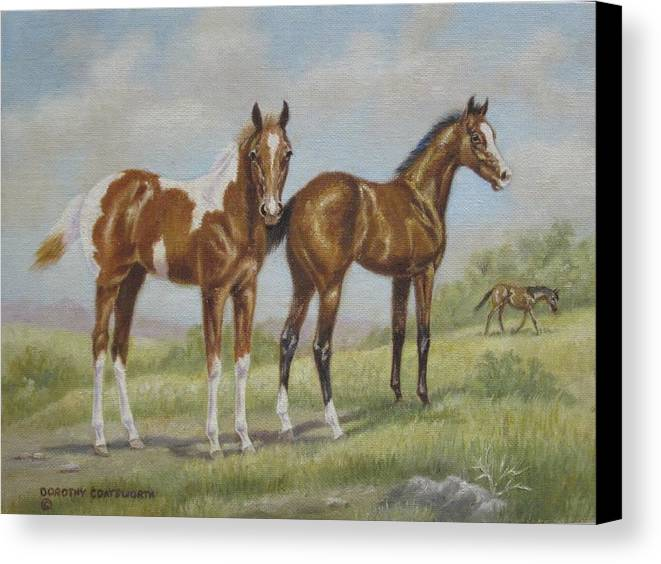 Canvas Print featuring the painting Foals In Pasture by Dorothy Coatsworth