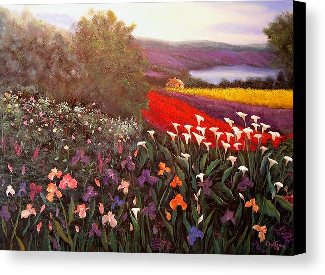Connie Tom Canvas Print featuring the painting Home In Tuscany by Connie Tom