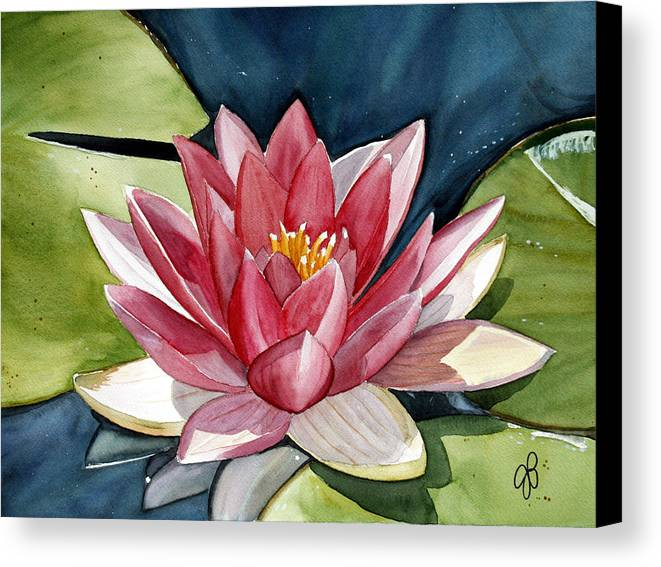 Water Lilly Flower Canvas Print featuring the painting Lilly Pond by Julie Pflanzer