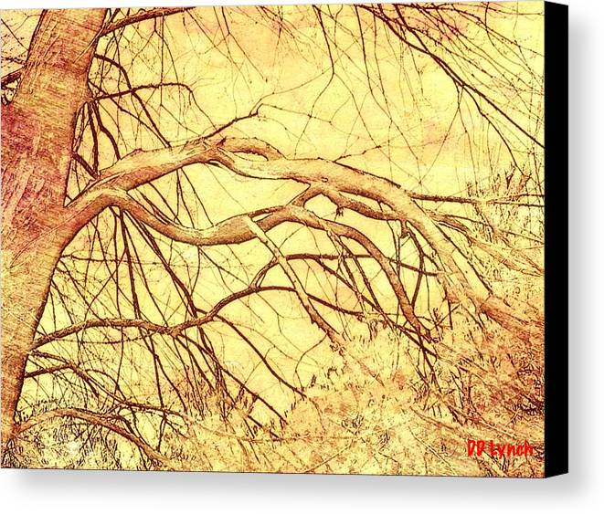 Tree Canvas Print featuring the photograph Lovely Twists In Nature by Debra Lynch