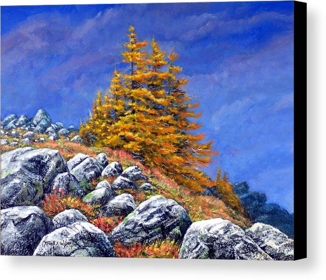 Mountains Canvas Print featuring the painting Mountain Tamaracks by Frank Wilson