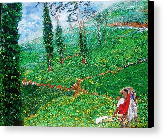 Tea Canvas Print featuring the painting Munnar Tea Gardens by Narayan Iyer